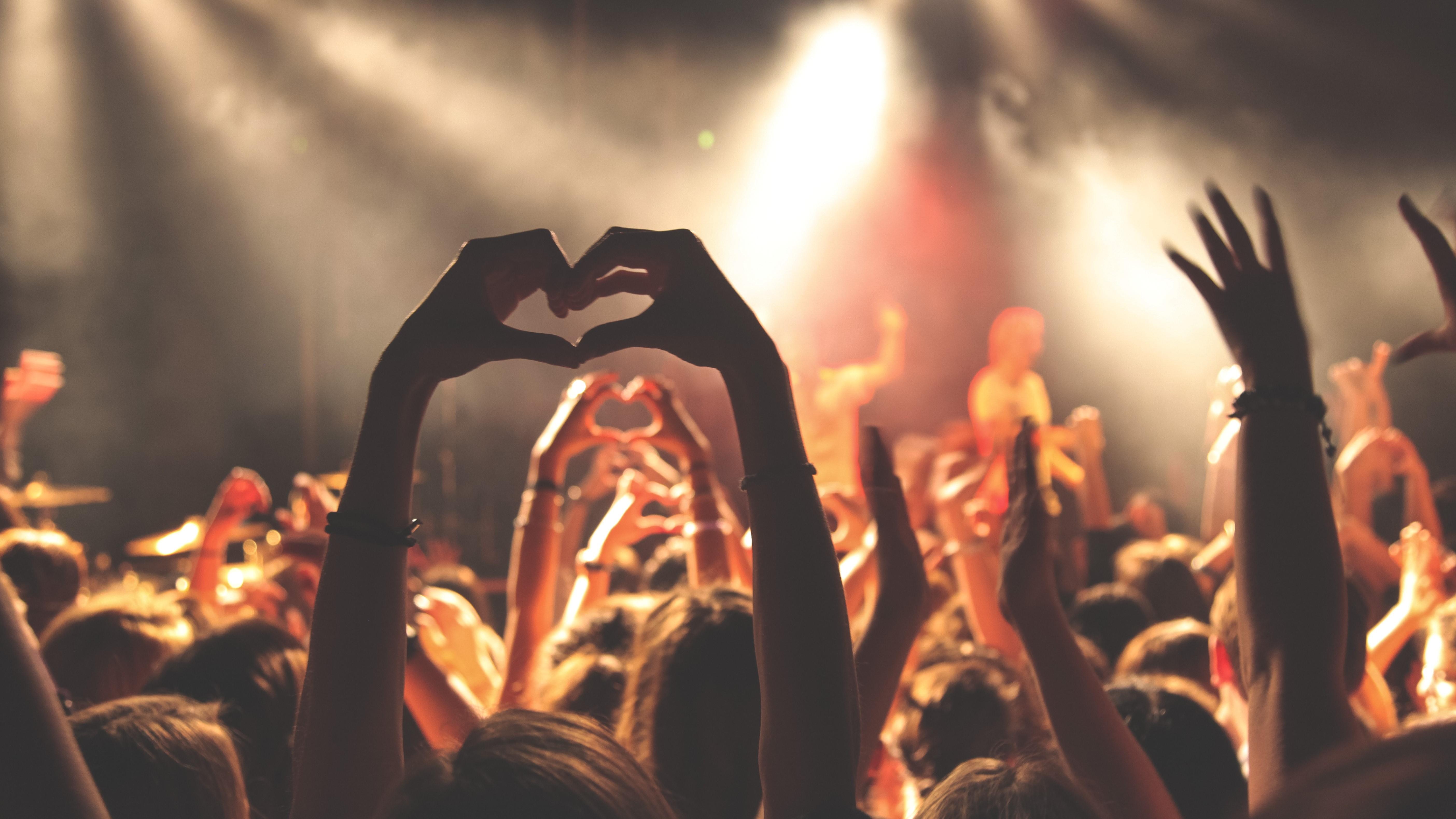 Menschenmasse auf einem Konzert